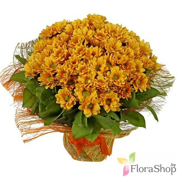 Bouquet of chrysanthemums Ginger